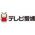テレビ愛媛